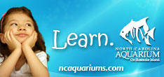 Host your next event at the North Carolina Aquarium on Roanoke Island.
