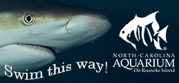 North Carolina Aquarium Events